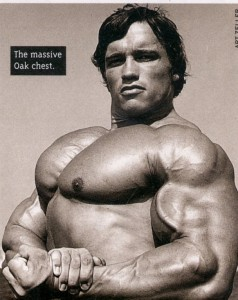 How to Build Strong, Heroic Pecs!