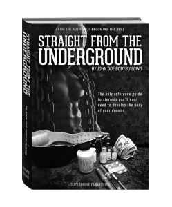 Straight From The Underground Book Review